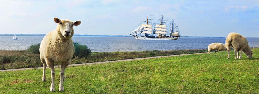 veranstaltungen-an-der-nordsee