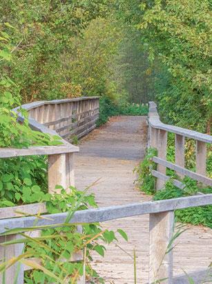 hemelsdorfer-see-wanderweg