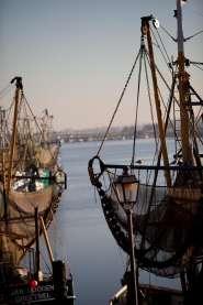 Ferienwohnung Fischerliesel  in Greetsiel Urlaubsumgebung vor Ort