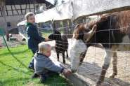 Bauernhofurlaub -Ferienhof Katzenmaier in Friedrichshafen Urlaubsumgebung vor Ort
